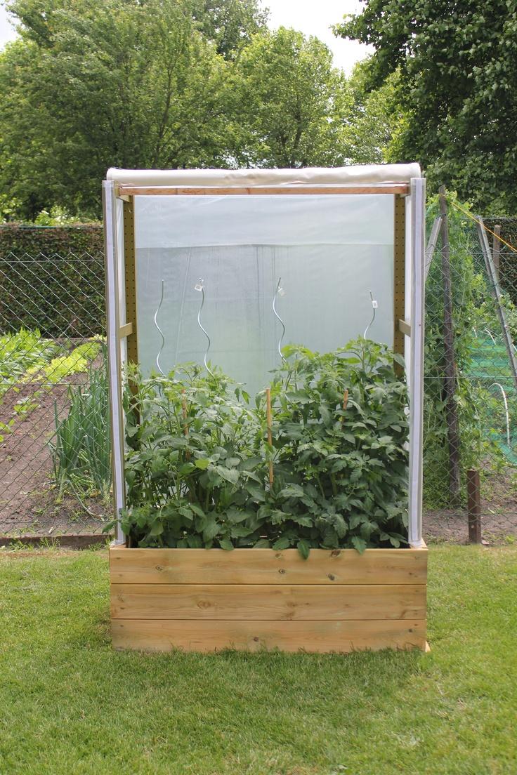 Image Result For Cheap Garden Trellis