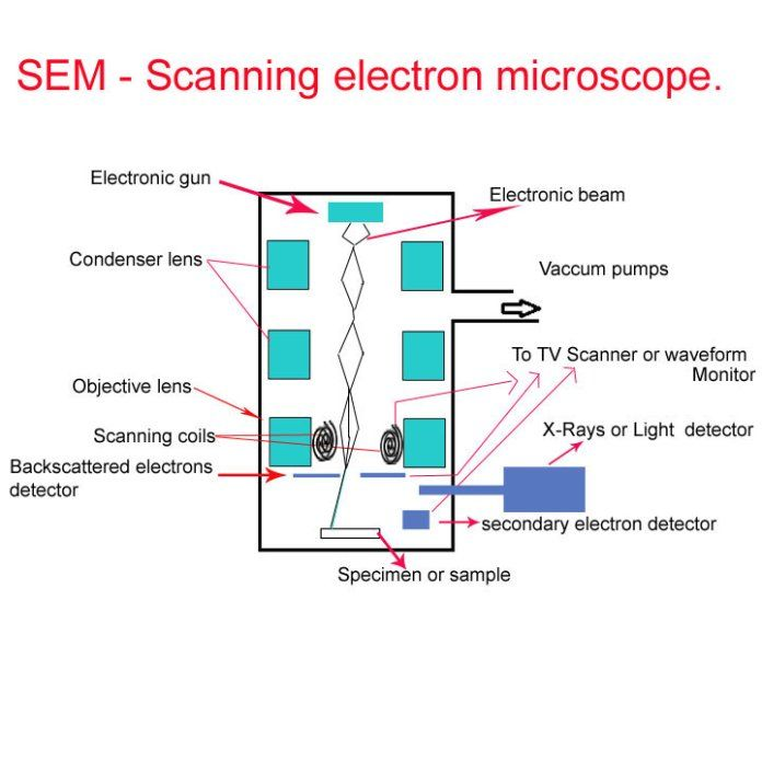 93bbb08eb045dee65f74f5359784fab8 - Principle Of Electron Microscopy And Its Applications
