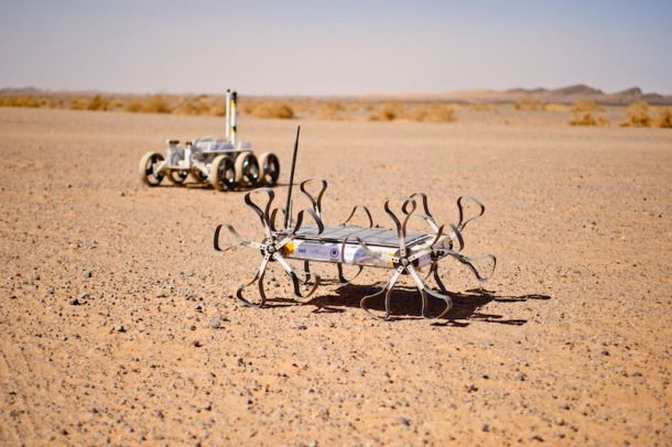 Crowd-funding campaign at Indiegogo to support the Hungarian Puli rover on its journey to the Moon - via Hawaii. http://www.indiegogo.com/projects/moon-rover-tweets-from-hawaii