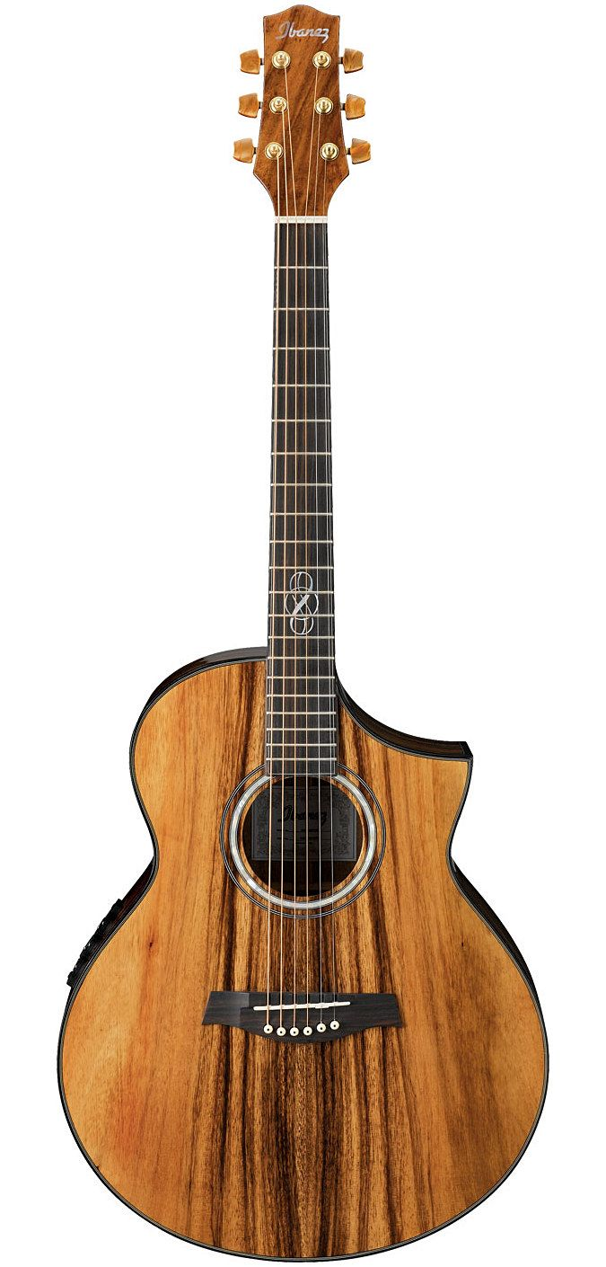 Exotic wood guitar | Ibanez Exotic Wood Series Acoustic Guitar ! | MonsterMarketplace.com