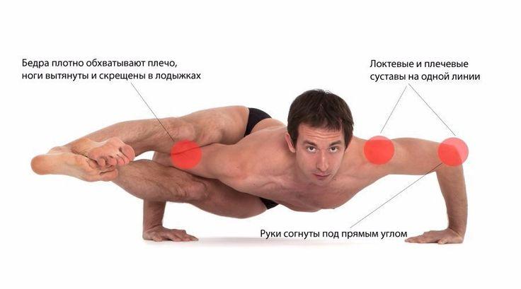 Аштавакрасана   Техника выполнения:   1) Руки поставьте широко, так, чтобы при сгибании в локтях образовался прямой угол   2) Ногу, с которой начинаете, заведите на плечо, свободную ногу согните и сомкните ступни в замок   3) Отожмитесь на руках, поднимите таз и, плотно обхватив бедрами плечо и сгибая руки, вытяните ноги вперед, выравнивая торс параллельно полу   Важно! Плечевые и локтевые суставы на одной линии. Не позволяйте себе «повисать» на суставах – при регулярном неправильном…