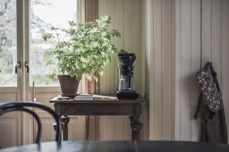Tålamod är en dygd som kan ge resultat. Titta @lisaburenius, några goda råd senare ✌🏼️| Today we enjoyed the sun  #kitchen #oldhouse #oldhouselove #interior #interiör #interiør #drwesterlund #pärlspont #byggnadsvård