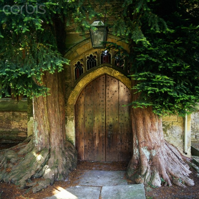 Door of St Edwards church, Wales, with two ancient yew trees either side.