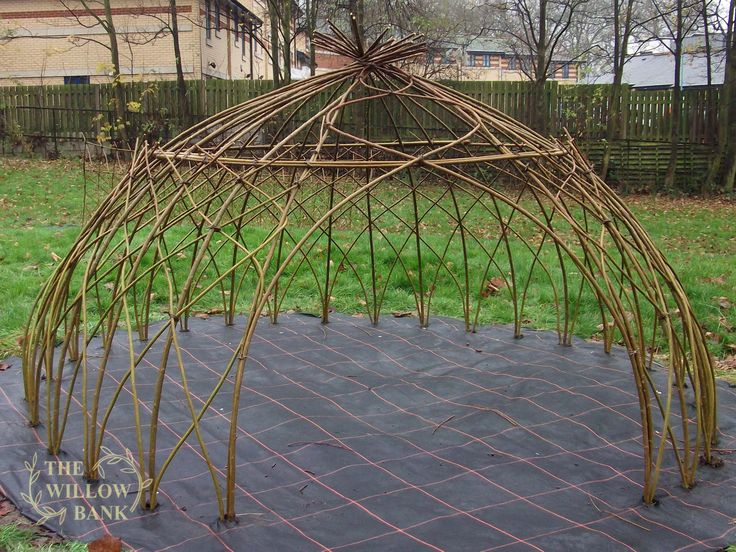 Shop here to buy Living Willow Kits for fencing and structures. See the Dome in action! Willow suppliers since 1985.