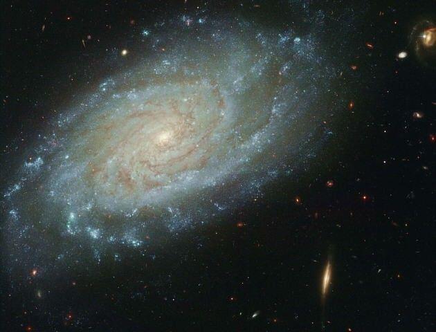 La galaxia NGC 3370 es muy parecida a nuestra Vía Láctea y está a unos 100 millones de años luz, en dirección de la constelación de Leo. Esta foto obtenida por el Telescopio Espacial Hubble permite ver muchos de sus detalles. Se han podido identificar algunas estrellas pulsantes individuales, llamadas Cefeidas, que pueden ser usadas para calcular la distancia a la NGC 3370.