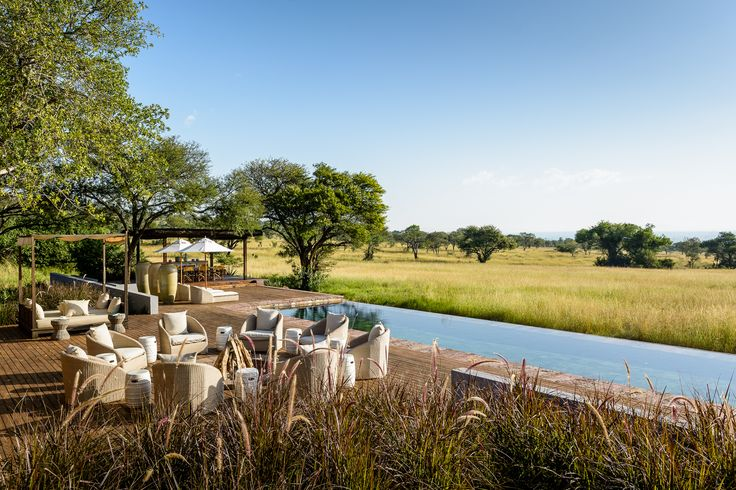 Majestic animals found at majestic lodges. Singita, luxurious and exciting.