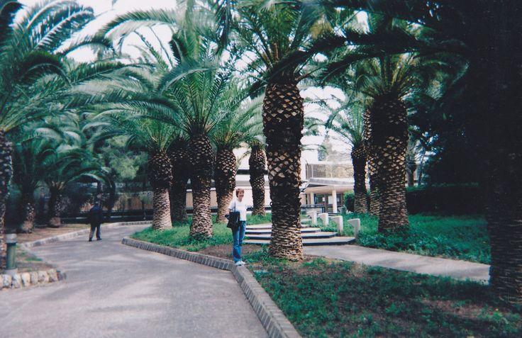 Italia: Sisilia 2004 (osa 2)