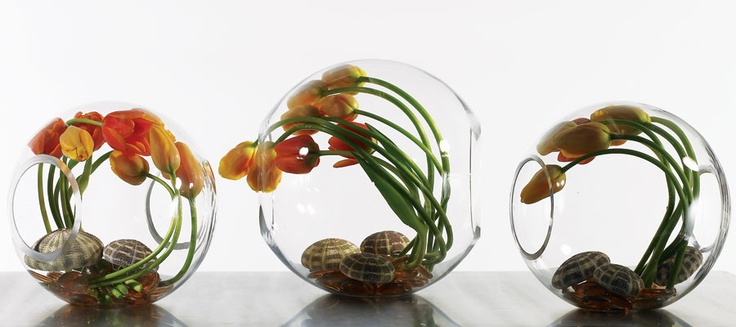 love these!: Globes Glasses, Glasses Vase, Globes Vase, Centerpieces Imagination, Blossoms Centerpieces, Bowls Vase, Corporate Events, Glasses Globes, Events Plans
