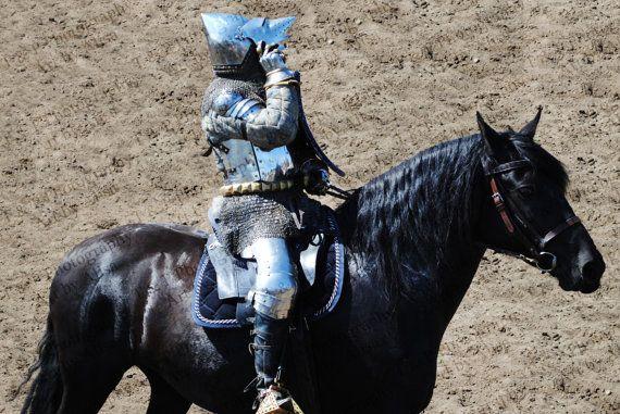 HORSE PHOTO Knight in Shining Armor Digital by Turtlesandpeace