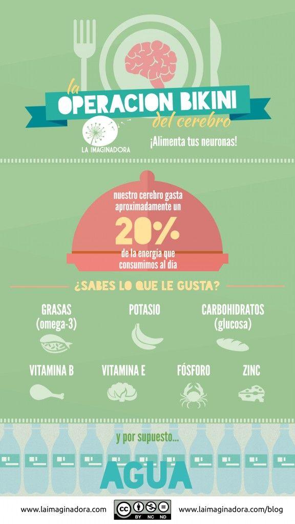 """Alimentación y aprendizaje: la """"operación bikini"""" de nuestro cerebro"""