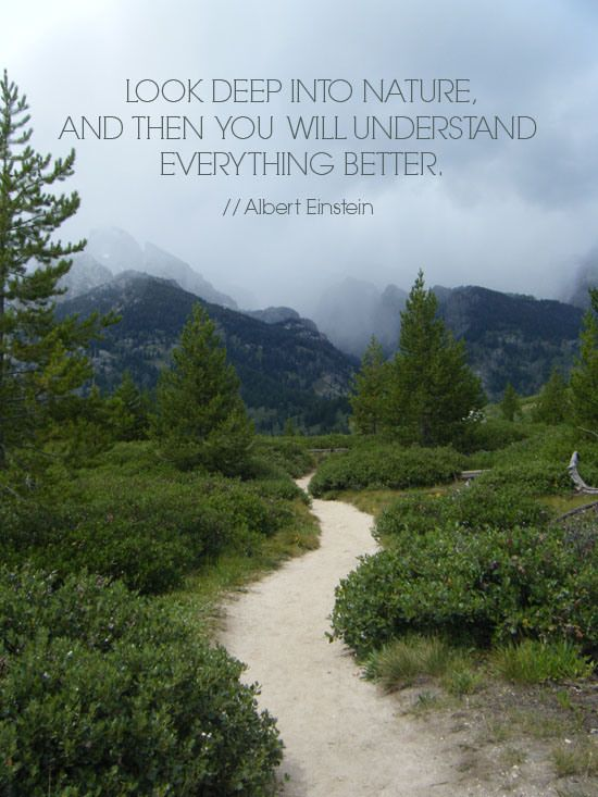 nature quotes national park einstein grand inspirational teton albert happy outdoors into deep parks path beauty hiking links earth god