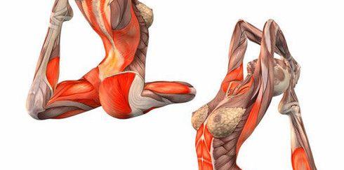 Синдром Венеры: убираем жировые подушки на бедрах и талии