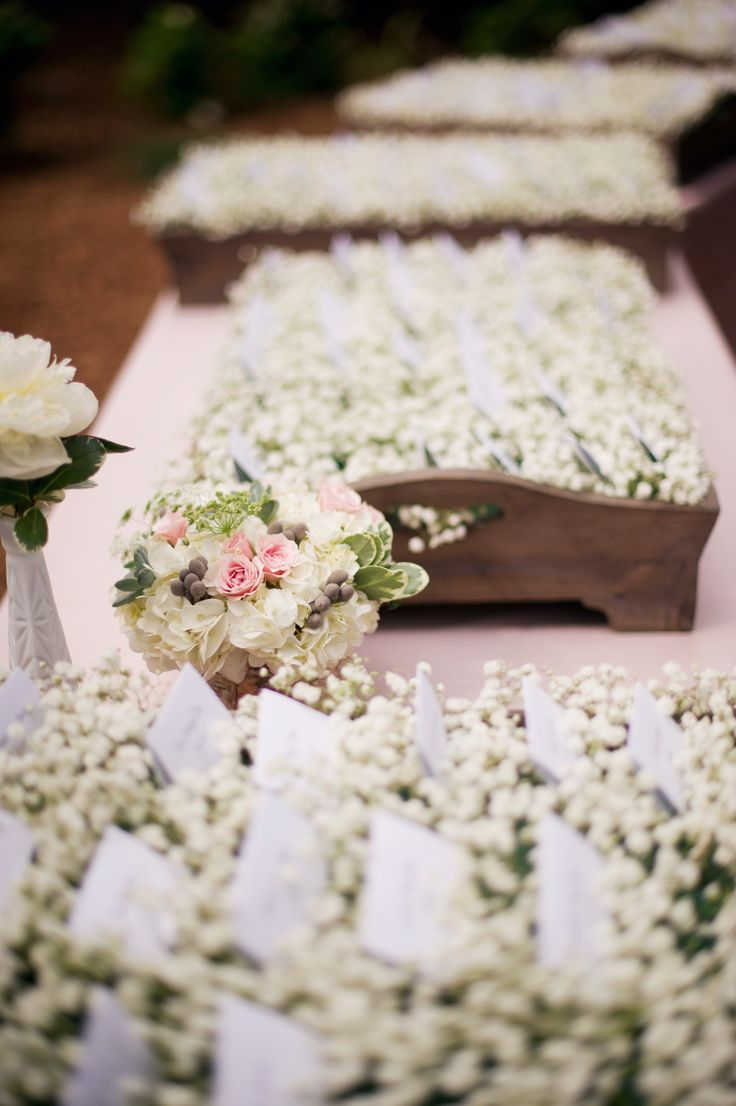 #EscortCards in a Bed of #BabysBreath | Kelly Sweet Photography