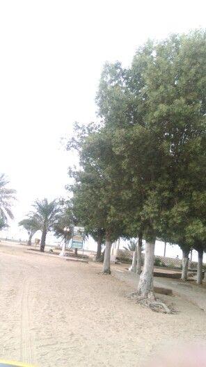 Beach in Eritrea
