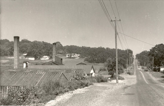 McKenzie Avenue, looking East from Hwy 17, with the South slope of Christmas Hill on the photo's left. Ed Lum's greenhouses can be seen in the foreground.