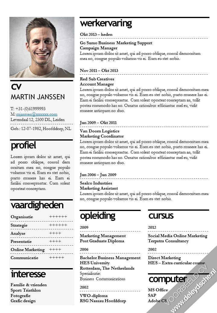 CV Sjabloon opvallend & professioneel: http://deleydsche.nl/product/cv-sjabloon-9