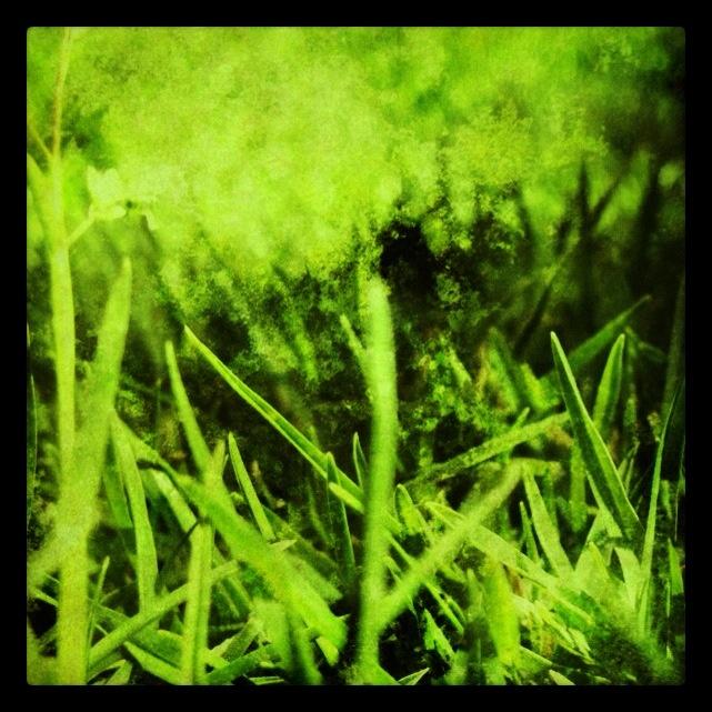 05/12 #dailyphotoblog
