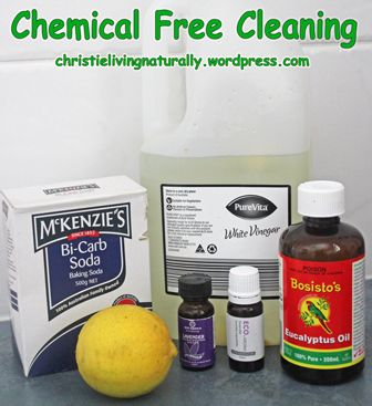 Some Basics for Chemical Free Cleaning