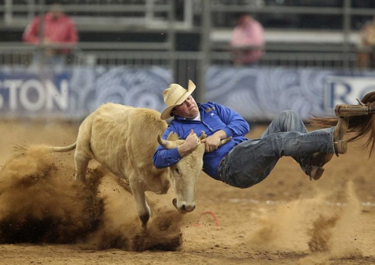 Kody Woodward competes in the BP Super Series III Round 1 Steer Wrestling competition during Houston Livestock Show and Rodeo at Reliant Stadium on Sunday, March 3, 2013, in Houston.    Photo By Mayra Beltran/Houston Chronicle