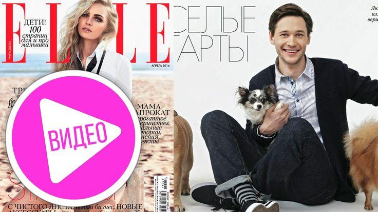Чихуахуа Софи в журнале ELLE #собаки #чихуахуа #собака #чихуа #elle #блог #ютуб