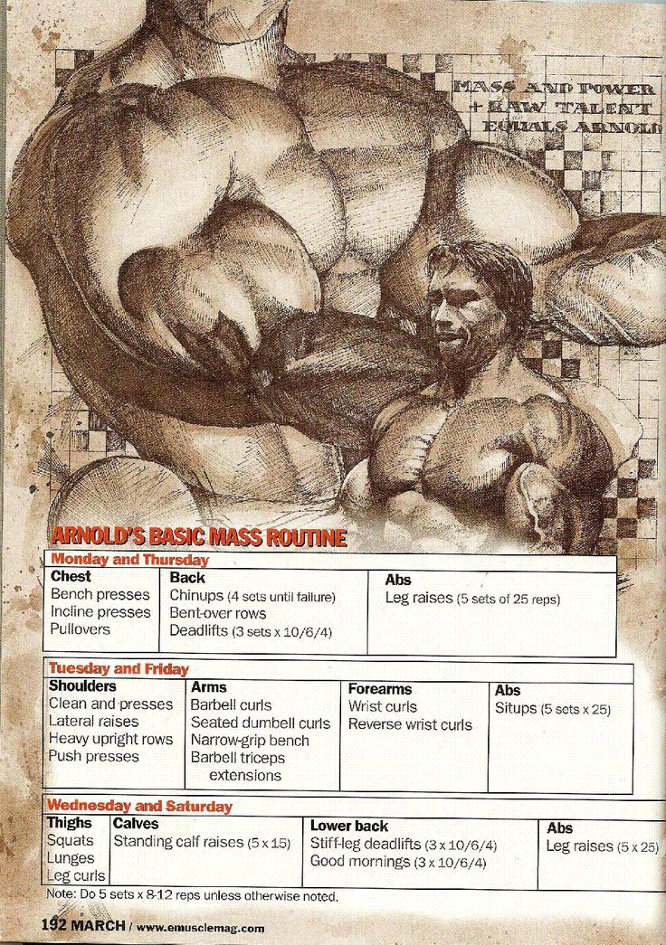 Arnold Schwarzenegger | 003 - Arnold's Basic Mass Routine...this is EXACTLY what i do :3 straight from the encyclopedia