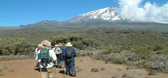 #KilimanjaroClimb is one of the popular outdoor activities of many people who love adventure and adrenaline activities. Know more @ https://www.northernmasailandsafaris.com/mountain-climbing/