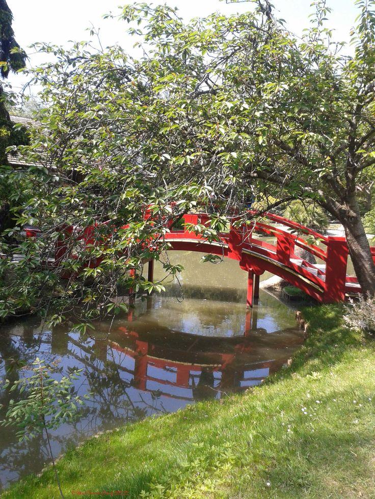 12 best Jardin Japonais images on Pinterest Gardening, Japanese - jardin japonais chez soi