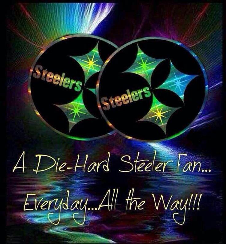 Pittsburgh Steelers~fan