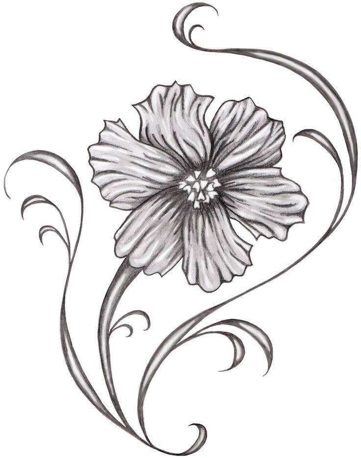 cosmos+flower+tattoo | Cosmos Flower Tattoo