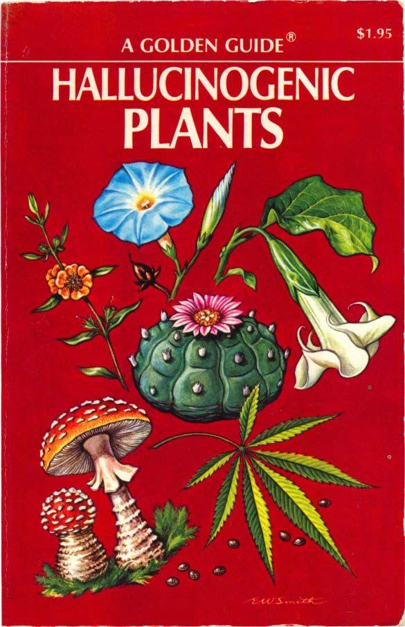 kava, psilocybin mushrooms, peyote, ayahuasca, devils breath (scopolamine), etc.