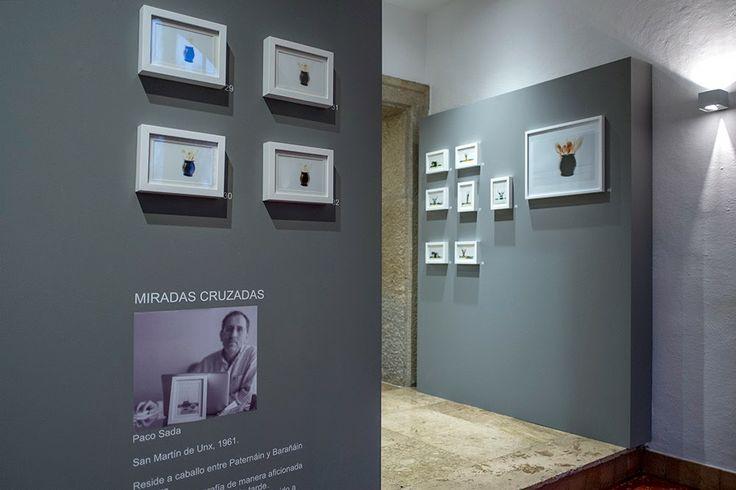 """Un recorrido por la exposición """"miradas cruzadas"""" en Lapuertagotica / A tour of the exhibition """"crossed eyes"""" in Lapuertagotica"""
