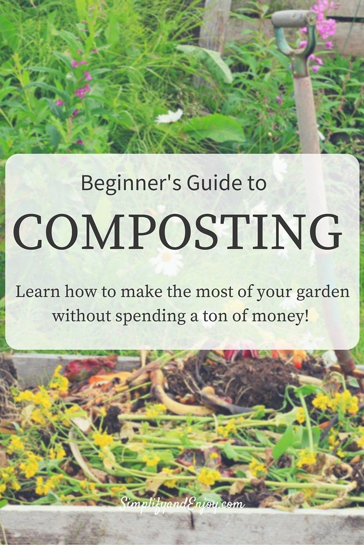 How to make a compost pile in your backyard - Looking For Ways To Make Your Yard More Beautiful And Productive Without Spending A Ton Of