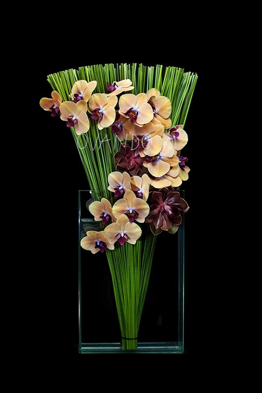 Fall Flair: Our signature grass fan is takes to the heights in a tall, modern square vase. A festive blend of orchids and rosy succulents arc gracefully across the composition. Approx. 12″l x 3″w x 27″h