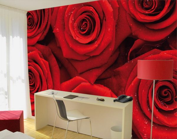 1000 images about walls and floors on pinterest stylish for Bora bora wall mural