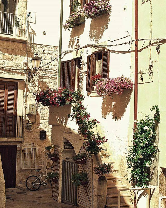 #polignanoamare #italy #puglia #bariitaly #bari #volgobari #volgopuglia #thisispuglia #vivopuglia #italyiloveyou #whatitalyis #wanderlust #travelbug #travelalone #traveldudes #traveltheworld #roundtheworld #solotravel #travellife #travelphotography #ourplanetdaily #burndiary #magnumphotos #burnmagazine #wanderluster #worldtrip #travelmore #travelawesome #passionpassport