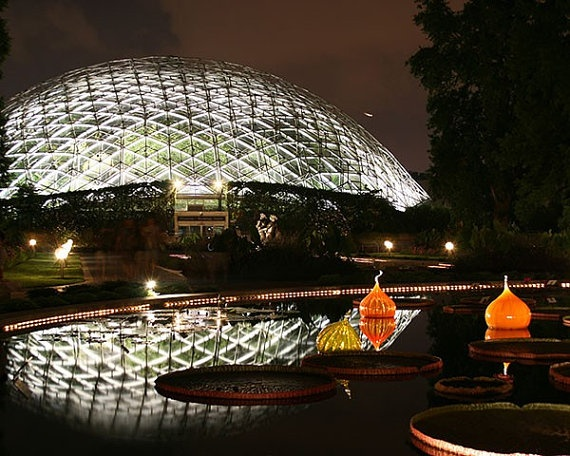 Summer Nights At The Botanical Gardens
