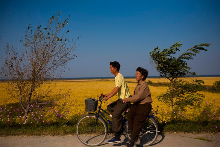 A couple on a bicycle coast down a hill past farm fields outside the eastern coastal city of Wonsan, North Korea on October 6, 2011. (David Guttenfelder/Associated Press)# via boston.comCoastal Cities, North Korean, Korea Awesome, 2014 Cycling, Korean Couples, Bicycles Coast, Eastern Coastal, Farms Fields, Peace North