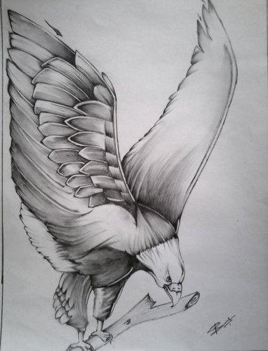 Pencil sketch eagle