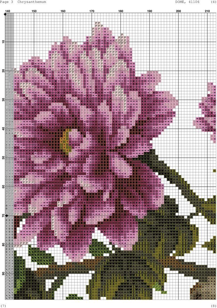 Chrysanthemums 5/10