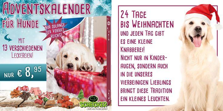 Adventskalender für Hunde Mit 13 verschiedenen Leckereien.  #Hund #Hunde #weihnachten #advent #adventskalender #xmas #geschenke