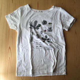 FELISSIMO(フェリシモ)の植物図鑑?今期Tシャツ レディースのトップス(Tシャツ(半袖/袖なし))の商品写真