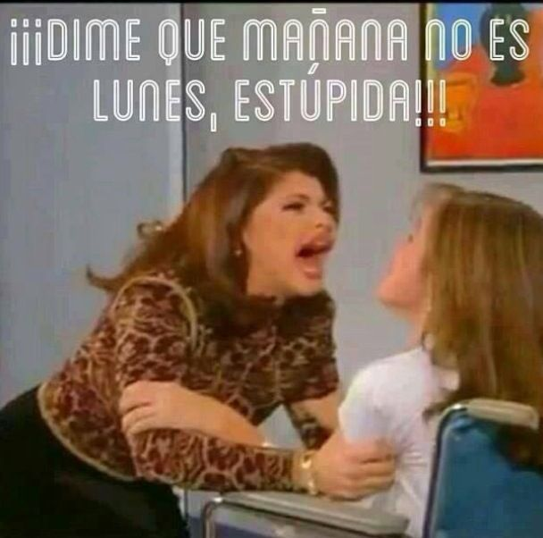 Dimelo estupida!!