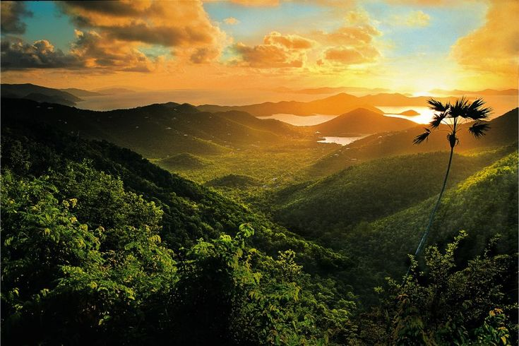 From lush mountain ranges to turquoise waters, the US Virgin Islands are picture perfect.Each of the three major islands has a unique character all its own. Fortunately, I was able to explore both…