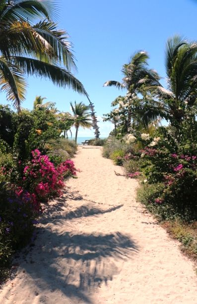 Pathway to Heaven.... Long Bay Beach, Turks & Caicos