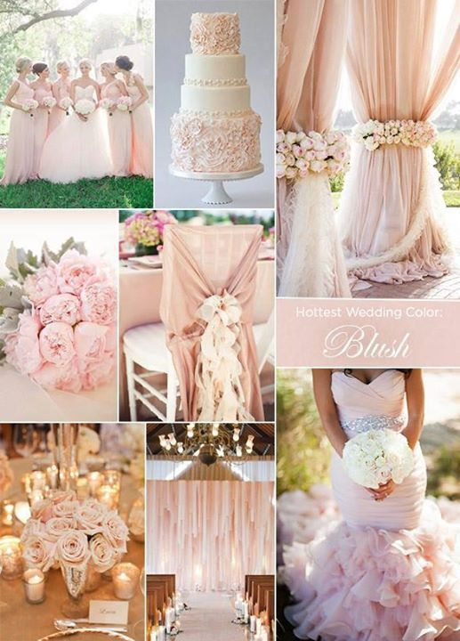 If your bride wants to use blush, check out these inspiring ideas http://www.colincowieweddings.com/articles/ceremony-reception/the-hottest-wedding-trends-of-2014?utm_source=facebook&utm_medium=social%20&utm_campaign=reception