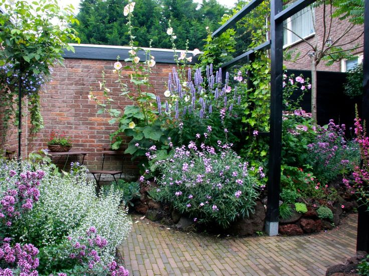 #small #garden #backyard
