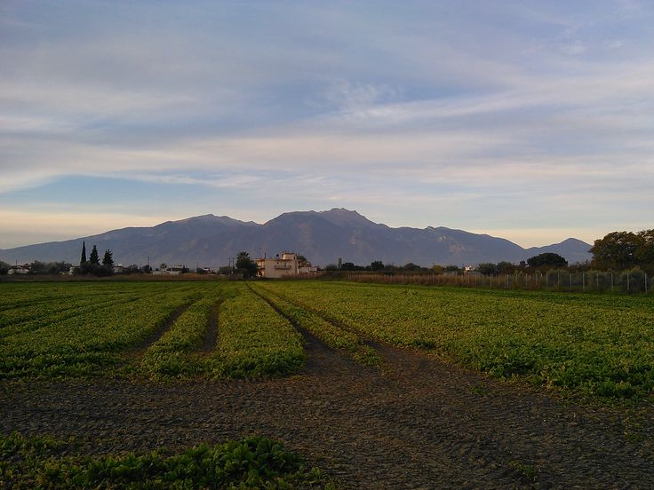 Mount Olympus (Mont Olympe), Northern Greece - Nov. 3, 2015 - from Peristasi, Pieria
