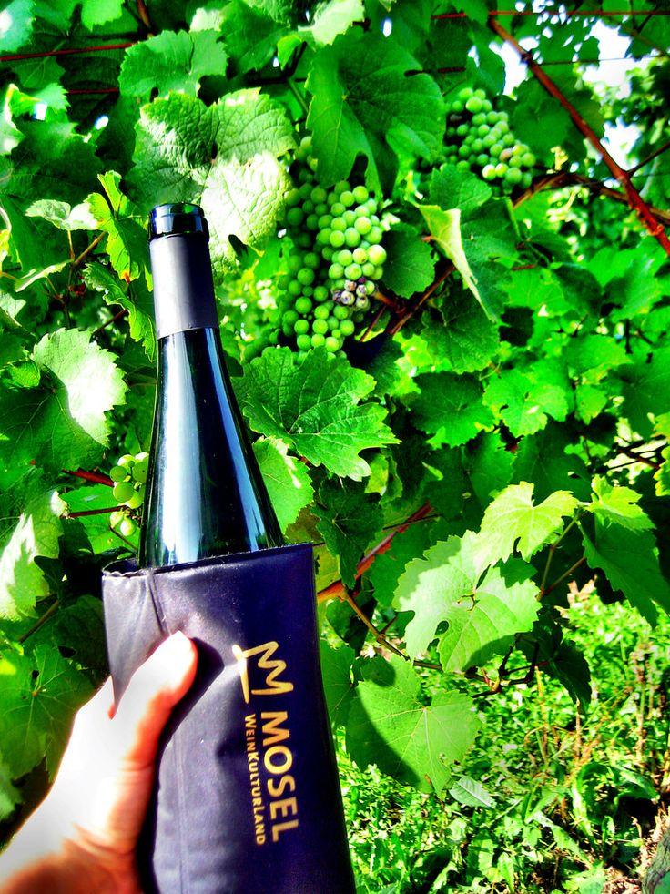 Wspaniałe mozelskie wino