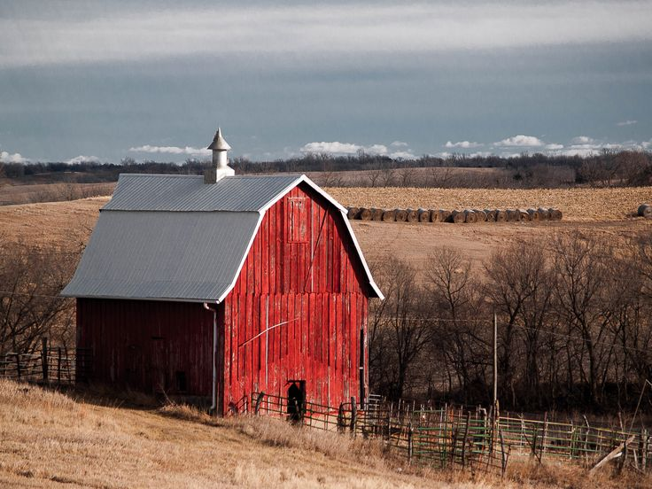 9 best images about local photographers on pinterest toms barn kansas photo by a skalla junglespirit Image collections