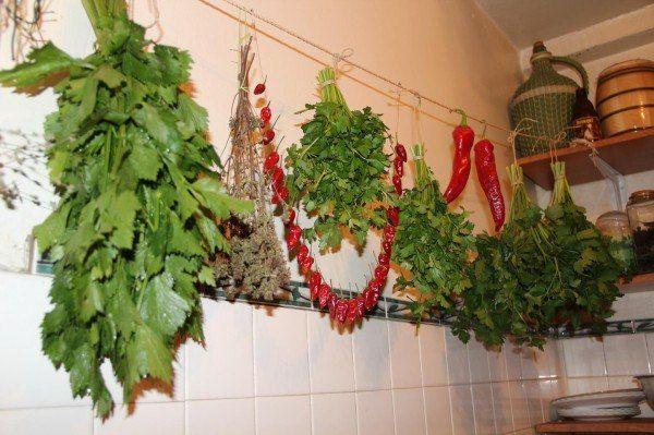 КАК СУШИТЬ ЗЕЛЕНЬ НА ОТКРЫТОМ ВОЗДУХЕ | Дачный сад и огород